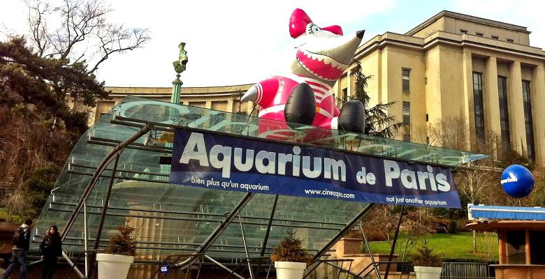 aquarium-paris-ditechna